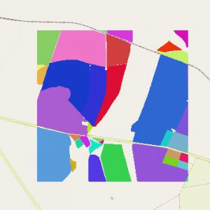 Figure 2: Example of tif holding field IDs, colored by individual fields.